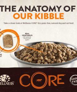 Wellness CORE Natural Grain Free Dry Dog Food, Small Breed Health Turkey & Chicken Recipe, 4-Pound Bag 2