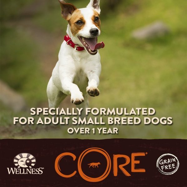 Wellness CORE Natural Grain Free Dry Dog Food, Small Breed Health Turkey & Chicken Recipe, 4-Pound Bag 4