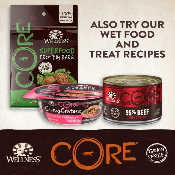 Wellness CORE Natural Grain Free Dry Dog Food, Small Breed Health Turkey & Chicken Recipe, 4-Pound Bag 5