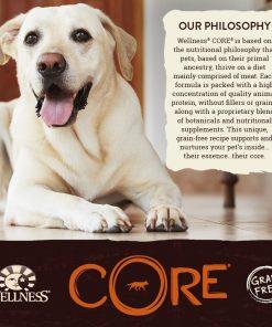 Wellness CORE Natural Grain Free Dry Dog Food, Small Breed Health Turkey & Chicken Recipe, 4-Pound Bag 9