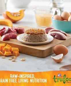 Wellness TruFood Tasty Pairings Natural Grain Free Wet Dog Food, Pumpkin, Lamb & Duck Recipe, 5-Ounce Can (Value Pack of 24) 2