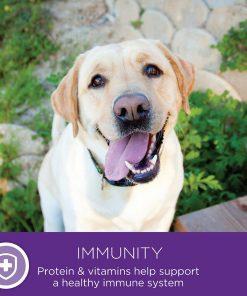 Wellness Small Breed Complete Health Turkey & Peas Senior Dog Food 11