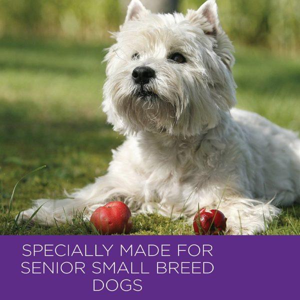 Wellness Small Breed Complete Health Turkey & Peas Senior Dog Food 2