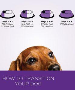 Wellness Small Breed Complete Health Turkey & Peas Senior Dog Food 3