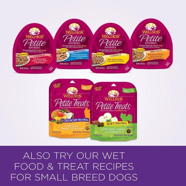 Wellness Small Breed Complete Health Turkey & Peas Senior Dog Food 5