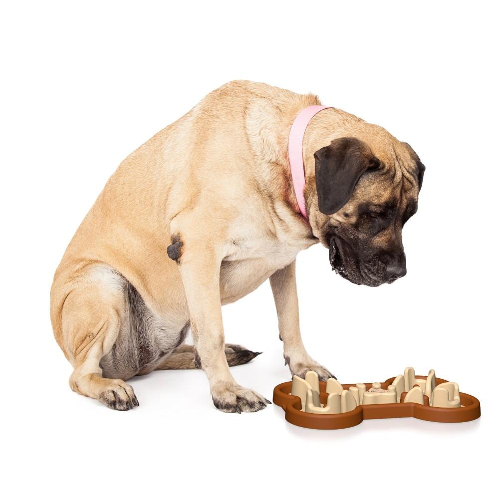 Guzzle Muzzle Slow Feed Dog Bowl Cute Dog Slow Feeder
