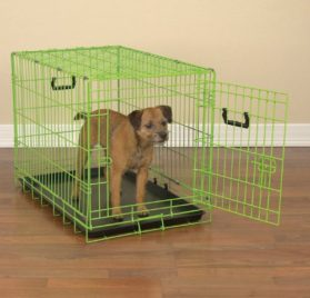 ProSelect Crate Appeal Fashion Color Dog Crates for Dogs and Pets
