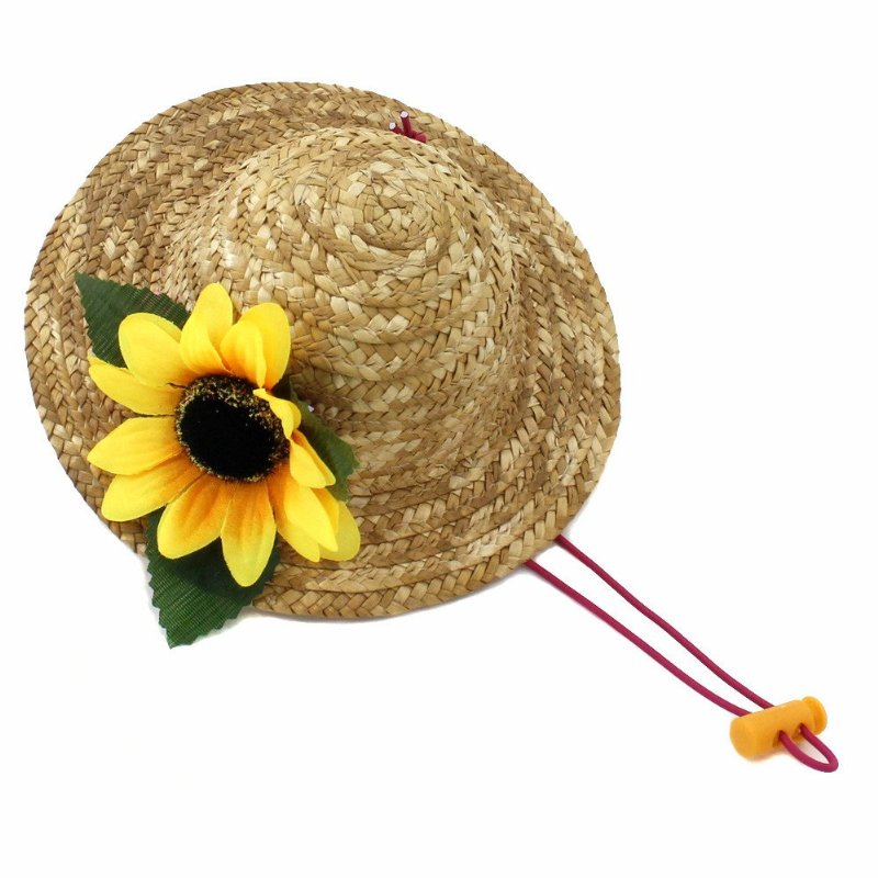 Beautiful 3d Sunflower Handcrafted Woven Straw Pet Hat Costume