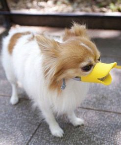 Cute Pet Ultra-Soft Silicone Foam Pet Dog Duckbill Mask Muzzle Anti-Biting and Barking Avoid the Pet from Eating Junk Food Outside to Keep Safety 3 Colors Size S M L 2