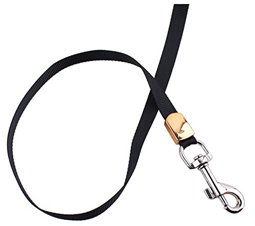 Dog retractable Faypro(TM) High quality retractable dog leads leashes tied the collars free to walking running belt for puppy chihuahua pitbull & cats 3M 4
