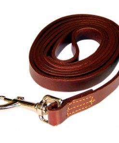 Logical Leather 6 Foot Dog Training Leash 2