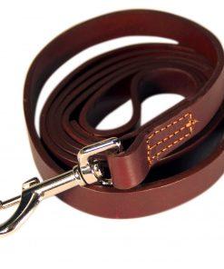 Logical Leather 6 Foot Dog Training Leash