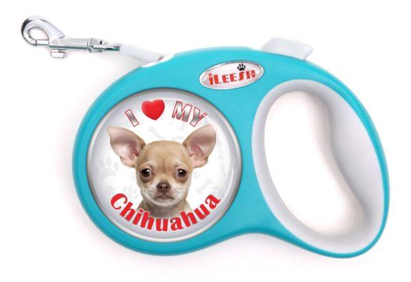 iLeesh i Love My Chihuahua Retractable Turquoise Leash