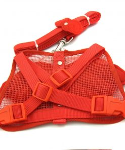 Alfie Couture Designer Pet Accessory - Angel Wing Harness with Leash 3