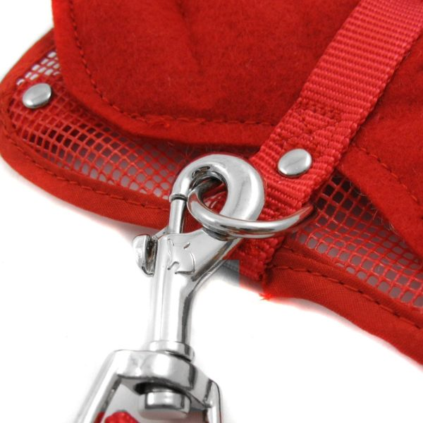 Alfie Couture Designer Pet Accessory - Angel Wing Harness with Leash 5