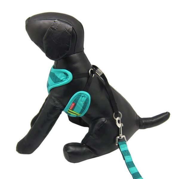 Alfie Pet by Petoga Couture - Alixis Step-in Harness and Leash Set 3