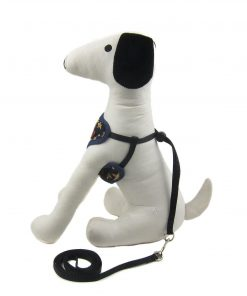 Alfie Pet by Petoga Couture - Hennie Step-in Harness and Leash Set 3