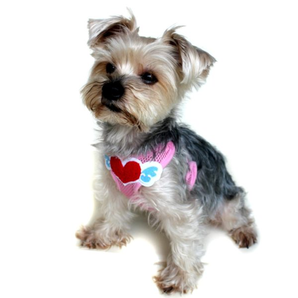 Alfie Pet by Petoga Couture - Rita Step-in Harness and Leash Set 2