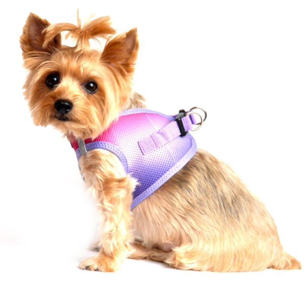 American River Dog Harness Ombre Collection - Raspberry Sundae 2
