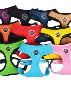 BINGPET BB5001 Soft Mesh Dog Harness Pet Walking Vest Puppy Padded Harnesses Adjustable , Orange Extra Small 2