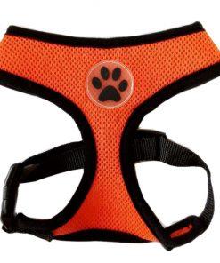 BINGPET BB5001 Soft Mesh Dog Harness Pet Walking Vest Puppy Padded Harnesses Adjustable , Orange Extra Small