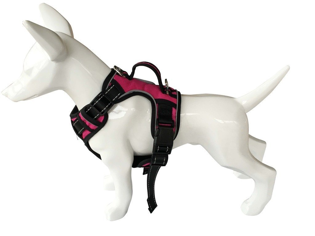 Pupteck Best Front Range No Pull Dog Harness With Vertical