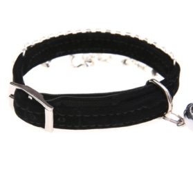 BINGPET Adjustable Trendy No Stink Sparkly Dog Collar With Pearl 2