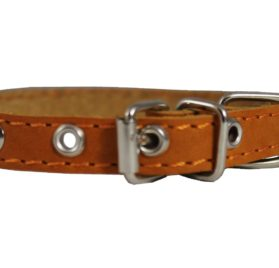 Real Leather Dog Collar 9.5-13 Neck Size, 1-2 Wide Chihuahua, Puppies