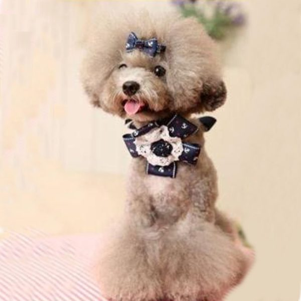 Alfie Pet Apparel by Petoga Couture - Anna Formal Ribbon Bow Necklace with Hair Clips 3-piece Set 7