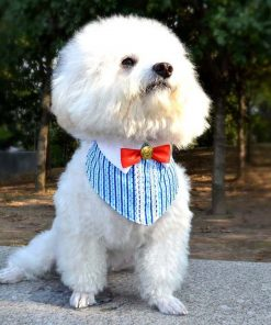 Alfie Pet by Petoga Couture - Heather Bandana for Dogs and Cats