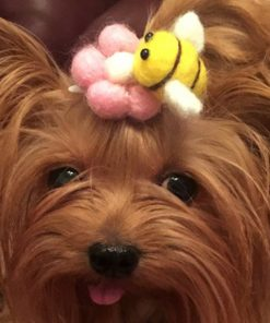 Alfie Pet by Petoga Couture - Pamela Hair Clip for Dogs, Cats and Small Animals