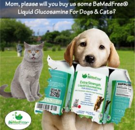 BeMedFree.com Extra Strength Liquid Glucosamine - Hip And Joint Pain Relief Supplement For Dogs And Cats 2