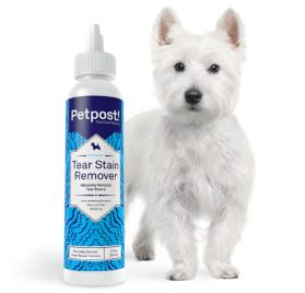 Petpost Tear Stain Remover for Dogs - Best Natural Eye Treatment for White Fur - Soothing Coconut Oil 2