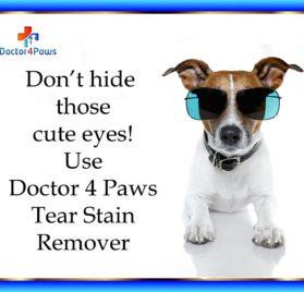 Premium Eye Tear Stain Remover for Dogs, Restore Those Cute looks, Prevents Stains Around the Eyes and Mouth 2