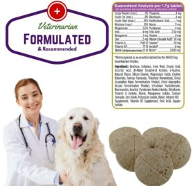 Senior Dog Multivitamin by Primo Pup Vet Health Supports Physical and Mental Wellbeing 2