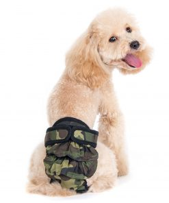 Alfie Pet by Petoga Couture - Maxine Diaper Dog Sanitary Pantie with Velcro Closure 2