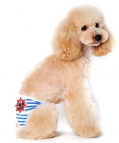 Alfie Pet by Petoga Couture - Mirian Diaper Dog Sanitary Pantie with Velcro Closure for Girls Dogs 2