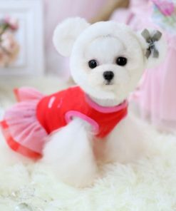 Chicpaw For Teacup Dogs Puppy Coat Chihuahua Red Bear Pet Clothes Dress 2