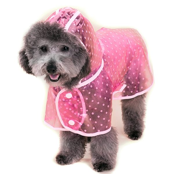 Alfie Pet by Petoga Couture - Alvin Raincoat (for Dogs and Cats) 9