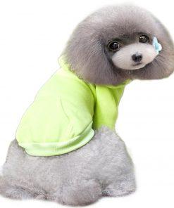 Alfie Pet by Petoga Couture -Alfie Pet by Petoga Couture - Shina Active HoodieShina Active Hoodie 8