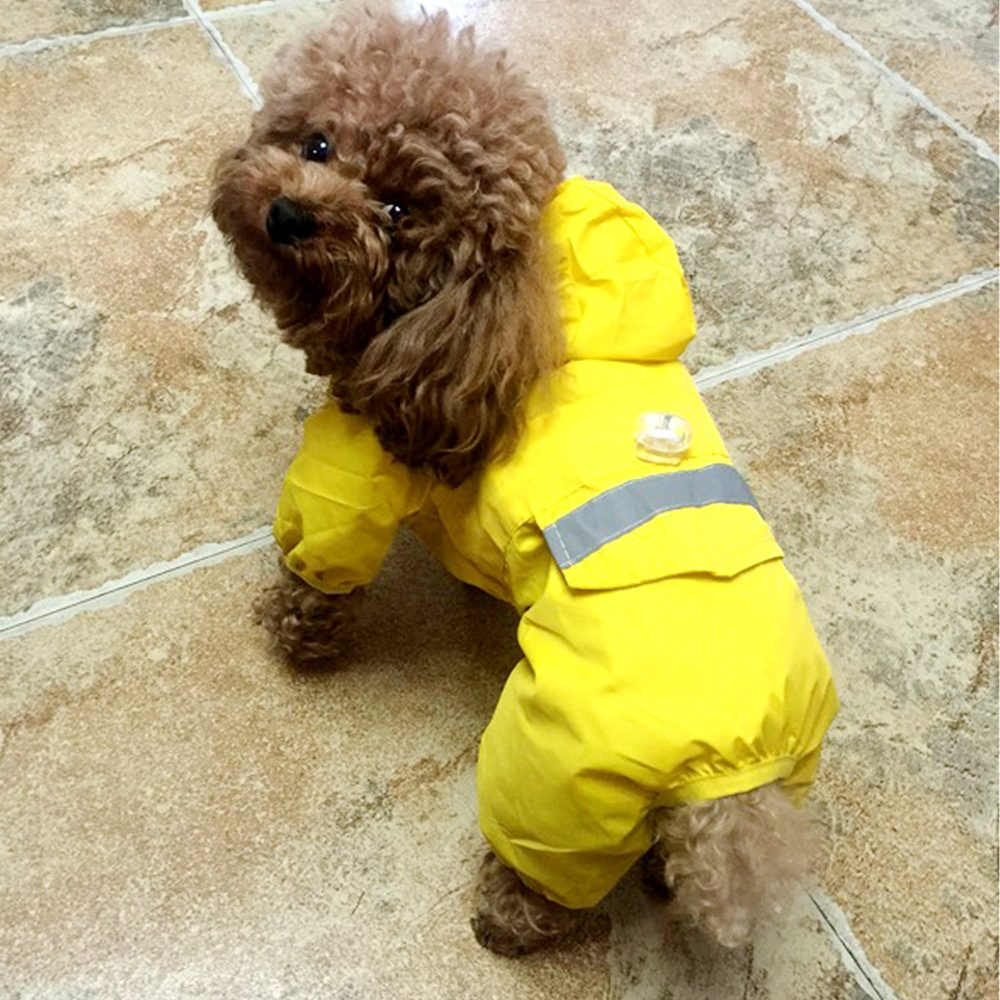 Alfie Pet By Petoga Couture Willis Rainy Days Waterproof