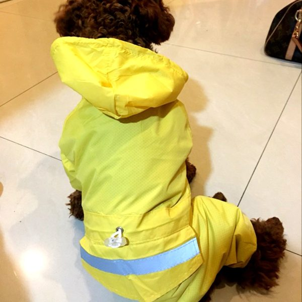 Alfie Pet by Petoga Couture - Willis Rainy Days Waterproof Raincoat (for Dogs and Cats) 3