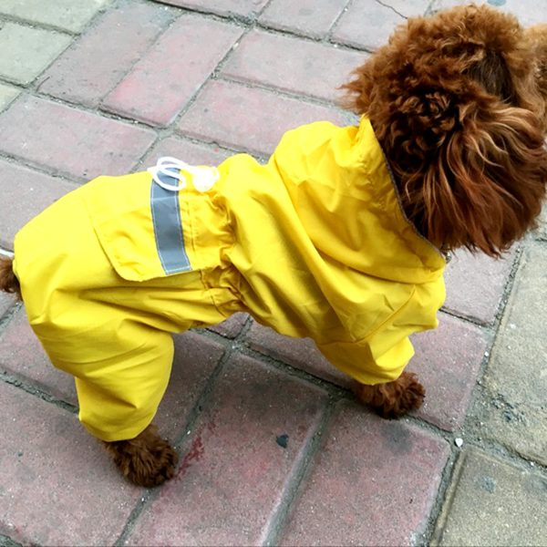 Alfie Pet by Petoga Couture - Willis Rainy Days Waterproof Raincoat (for Dogs and Cats) 9