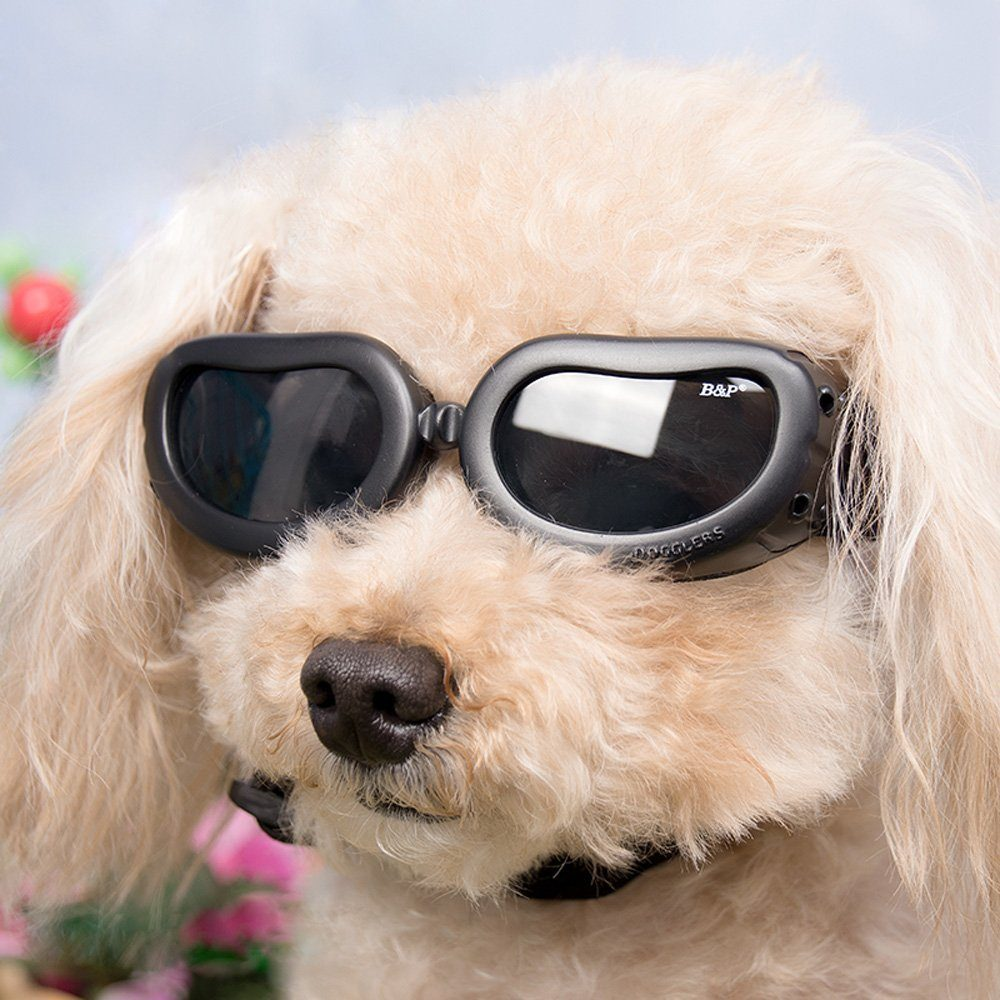 3d95b4474e5d7 ... Dog Sunglasses