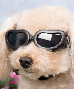 Dog Sunglasses, IN HAND UV Protective Foldable Pet Sunglasses Goggles with Adjustable Strap for Cat or Small Dogs 6