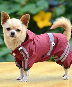Dog Waterproof Raincoat Outdoor Hooded Rain Coat for Teddy ,Pug,Chihuahua,Shih Tzu,Yorkshire Terriers,Papillon 2