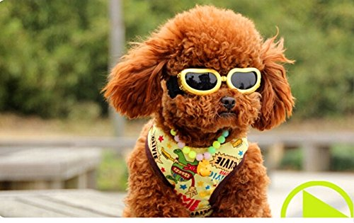 Namsan Fashion Anti-ultraviolet Sunglasses Goggles Waterproof Pet Sunglasses For Cats or Small Dogs
