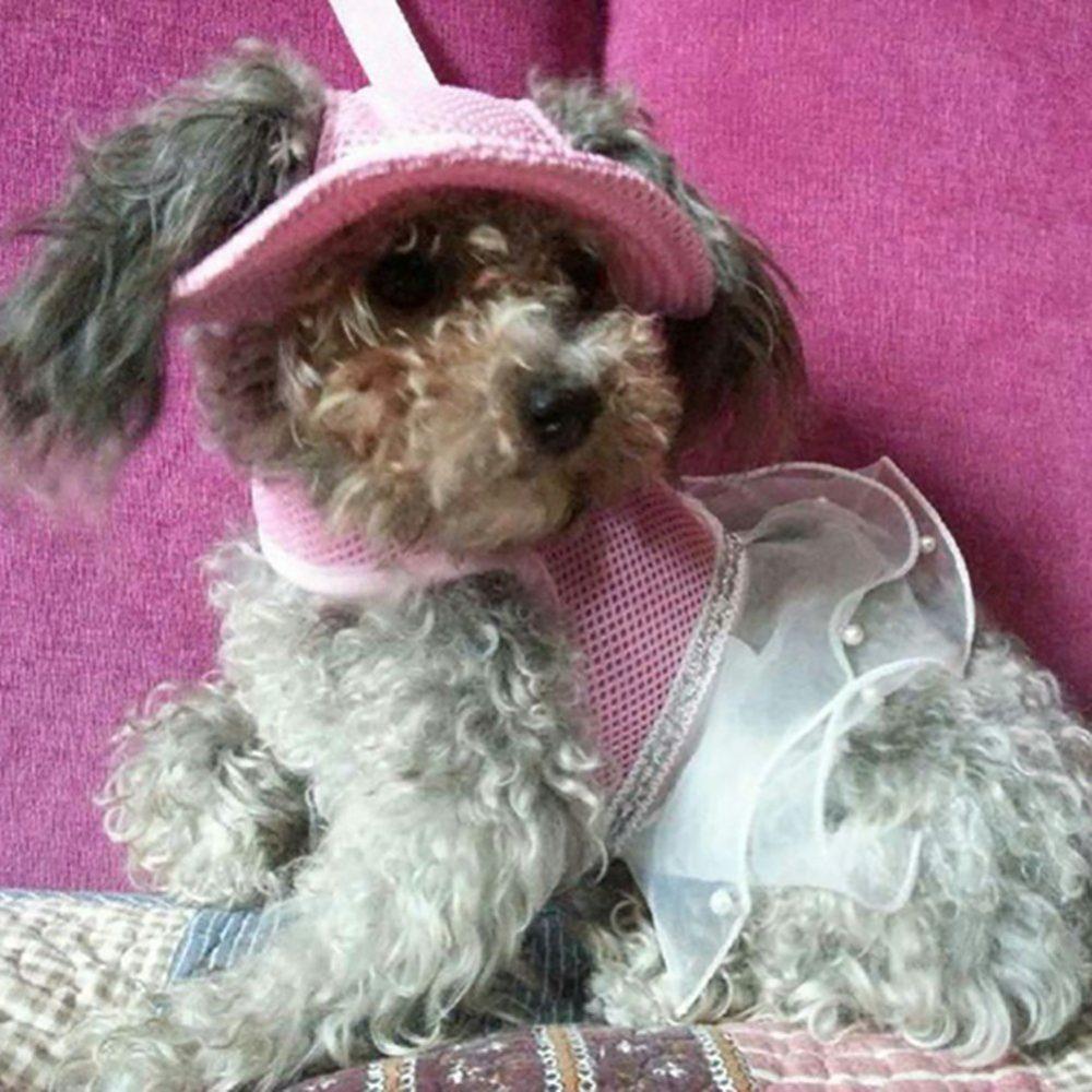 Marupet Round Brim Princess Cap Visor Hat Pet Dog Mesh Porous Sun 9dd1785e3688