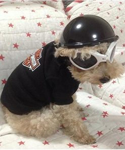 WMSTUDIO Pets Ridding Caps Cosplay Hat ABS Plastic Motorcycle Helmets Sports Dog Costumes Accessories 2