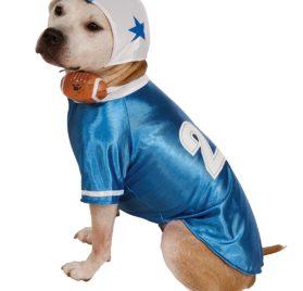 Blue Football Player Dog Costume